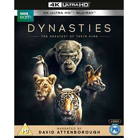 Dynasties (UHD+BD) (UK)