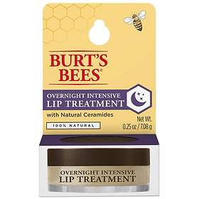 Burt's Bees Overnight Intensive Lip Treatment Pot