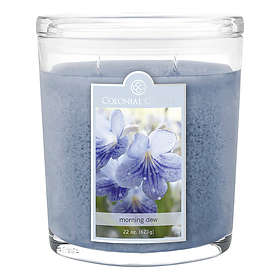 Colonial Candle Large Doftljus Morning Dew