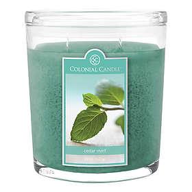 Colonial Candle Large Doftljus Cedar Mint