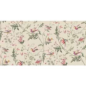 Cole & Son Hummingbirds Archive Anthology (100/14071)