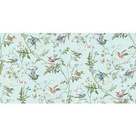 Cole & Son Hummingbirds Archive Anthology (100/14069)