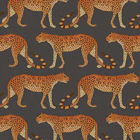 Cole & Son Leopard Walk Ardmore (109/2008)