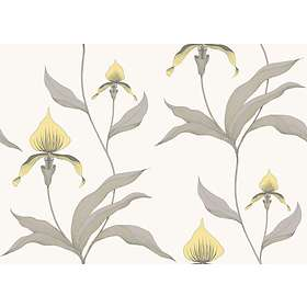 Cole & Son Orchid Contemporary Restyled (95/10057)