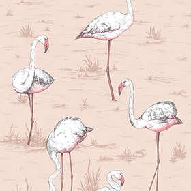 Cole & Son Flamingos Icons (112/11039)