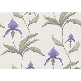 Cole & Son Orchid New Contemporary (66/4024)
