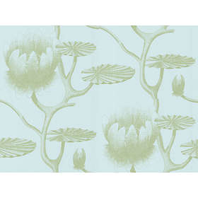 Cole & Son Lily New Contemporary Two (69/3112)