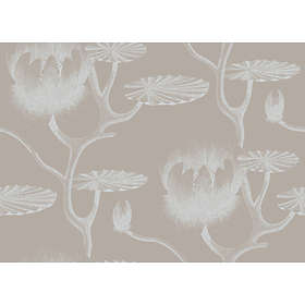 Cole & Son Lily New Contemporary Two (69/3110)