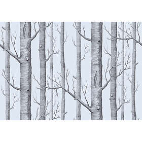 Cole & Son Woods New Contemporary Two (69/12150)