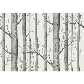 Cole & Son Woods New Contemporary Two (69/12147)