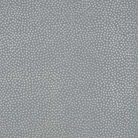 Carma Callisto (AR00383)