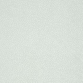 Carma Callisto (AR00381)