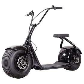 OBG Rides V1 1000W 60V