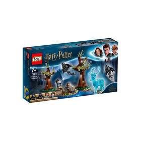 LEGO Harry Potter 75945 Odotum suojelius