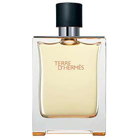 Hermes Hermes Terre Edt D'hermes Terre 200ml 200ml D'hermes Hermes Terre Edt RLq3j54A