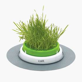 Cat It Senses 2.0 Grass Planter