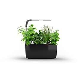 Tregren T6 Growing Kit