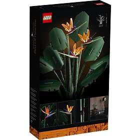 LEGO Miscellaneous 10289 Kolibrikukka