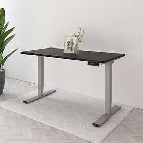 FlexiSpot Home Office Electric Standing Desk Frames 3-Stage Premium Option EC5