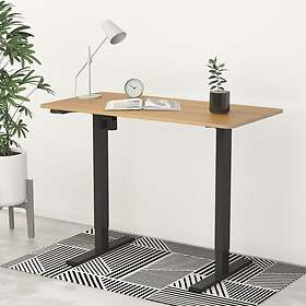 FlexiSpot Height Adjustable Standing Desk EC1 With Easy-to-control Settings