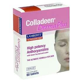 Lamberts Colladeen Derma Plus 60 Tabletter