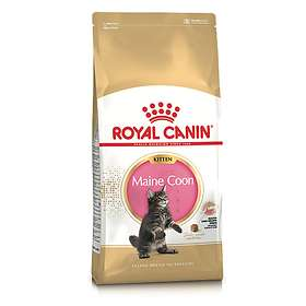 Royal Canin Breed Maine Coon 36 Kitten 4kg