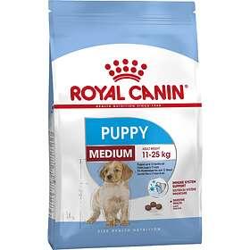 Royal Canin SHN Medium Junior 10kg