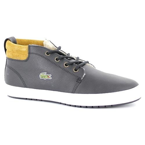 Lacoste Ampthill Terra (Uomo)