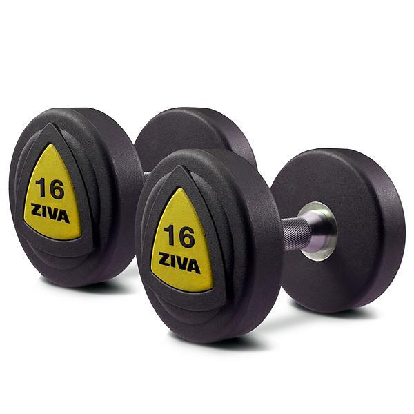 Dumbbell Set Price Philippines: Best Deals On Ziva ZVO PU Dumbbells 2x12kg Dumbbell
