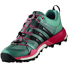 entire collection competitive price classic Adidas Terrex Skychaser GTX (Women's)