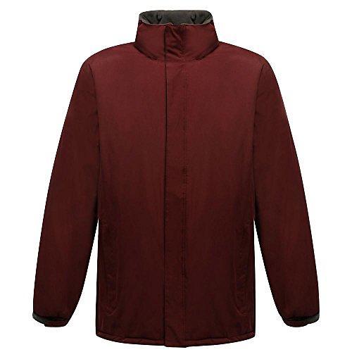 Regatta Aledo Waterproof Insulated Jacket (Donna)